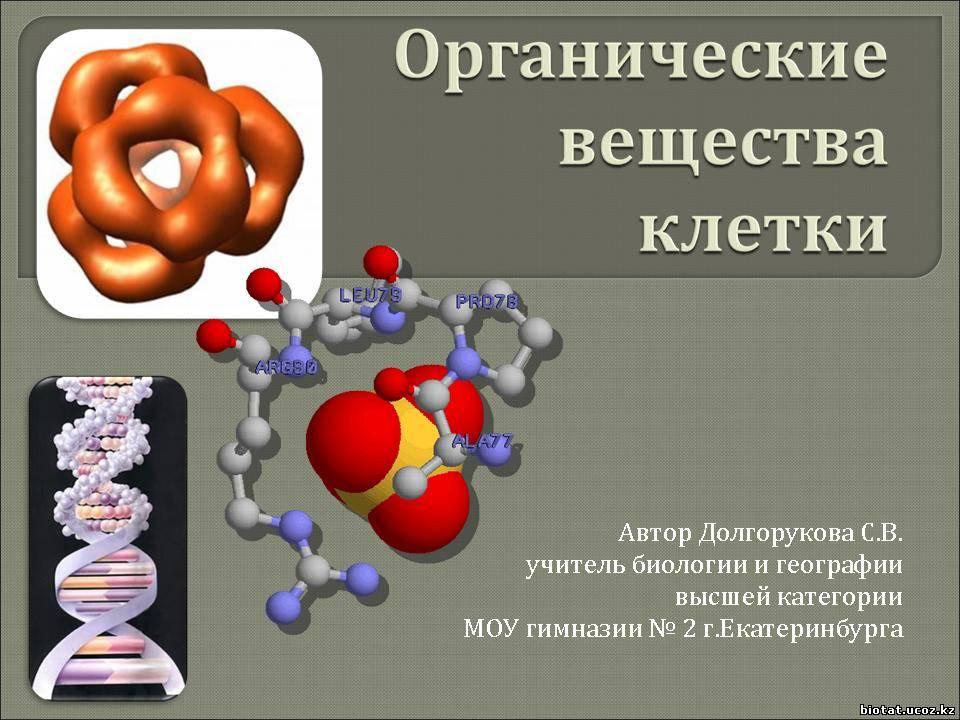 Домашняя страница http tana ucoz ru load